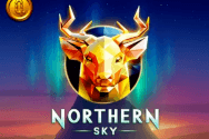 northern-sky