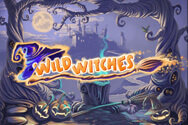 wild-witches