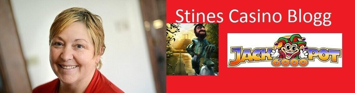 stines-blogg-bild2