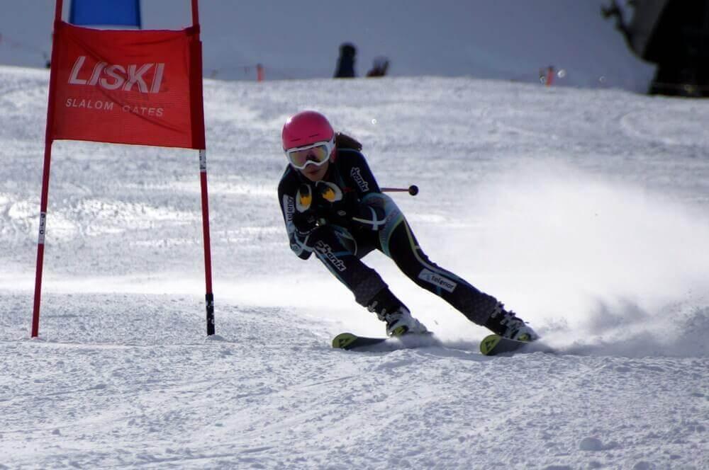 alpine skidor